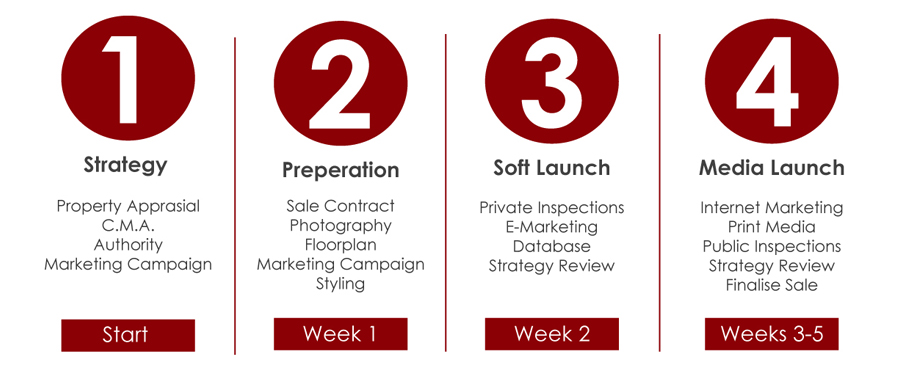 Strategy, Preperation, Soft Launch, Media Launch,